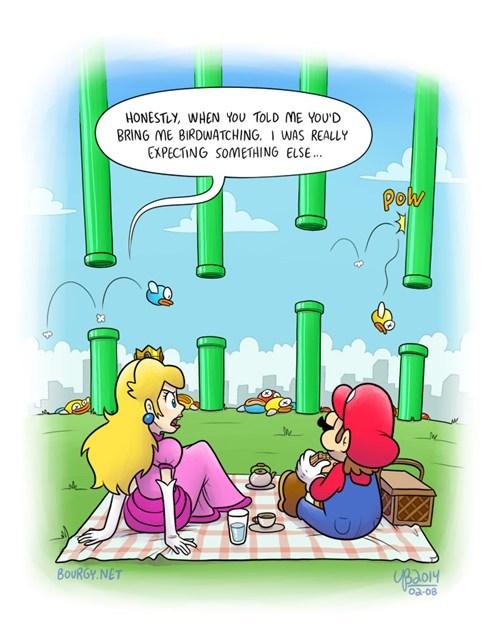 Maria and Princess Peach watching Flappy Bird die